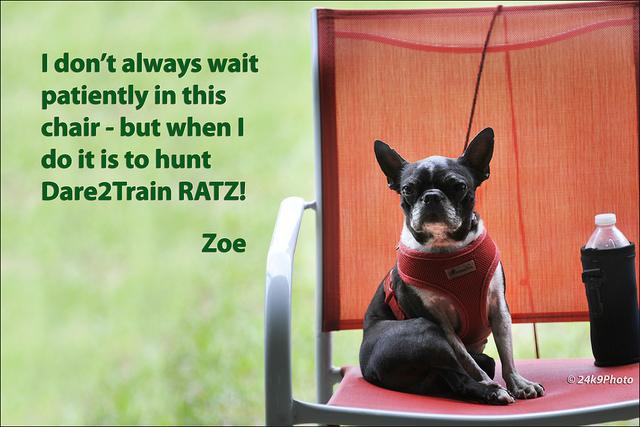 Zoe wait_CS00948
